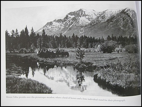 Historic Photos of Lake Tahoe