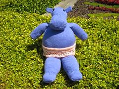 Toy_2009_06_13_HappyHippo04