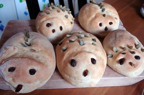 Dino breads