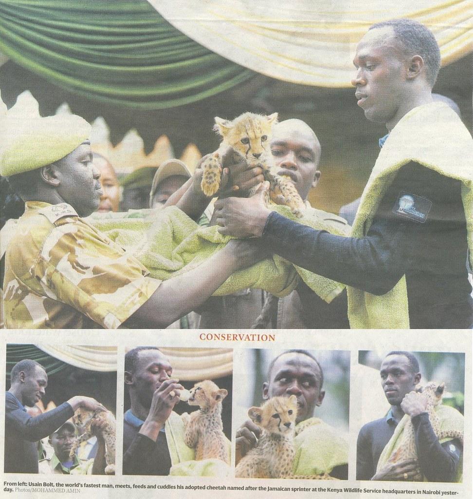 Bolt adopts Cheetah