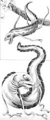 tree eels