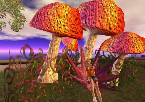 MS Main Mushroom Throne