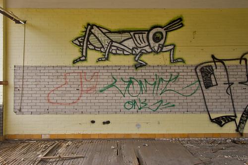 grasshopper iv
