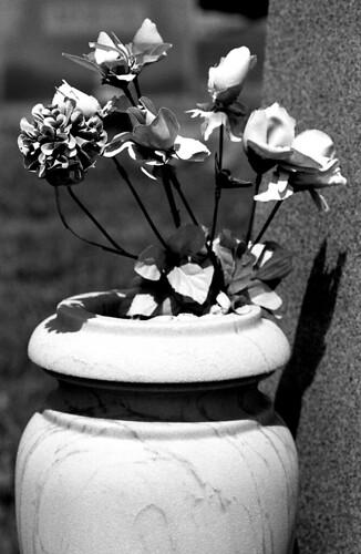 Fake Cemetery Flowers. (Kodak Tri-X. Nikon F100. Epson V500.)