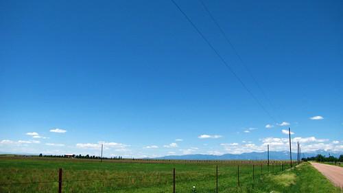 Green prairie