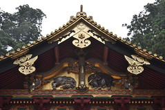 Nikko Elephants