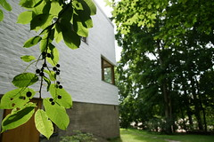 The Aalto House