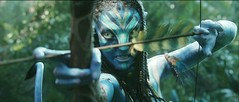 Avatar - Bow and Arrows