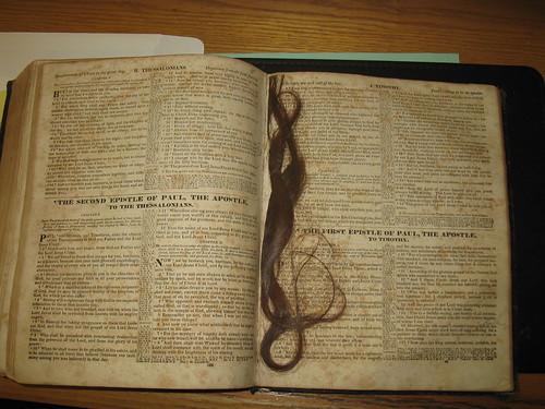 Hair from the Matchett Bible