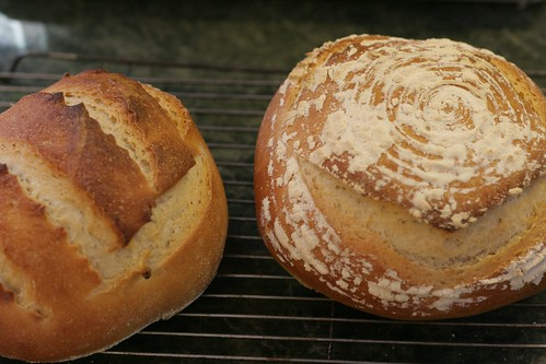 OLS Week 7 : Sourdough bread