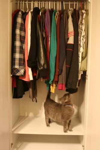 inside of wardrobe