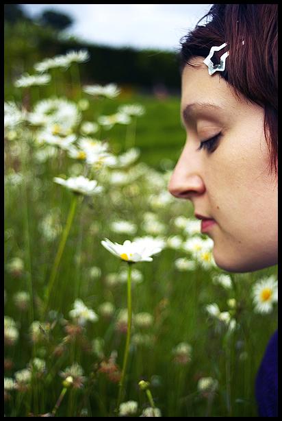 flower sp small.jpg