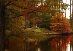Autumn Colors in Duke Gardens