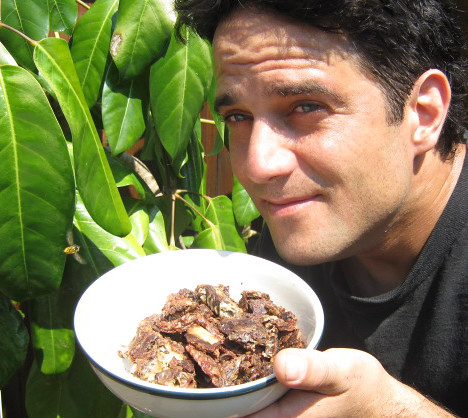 bee propolis in modern medicine and cuisine