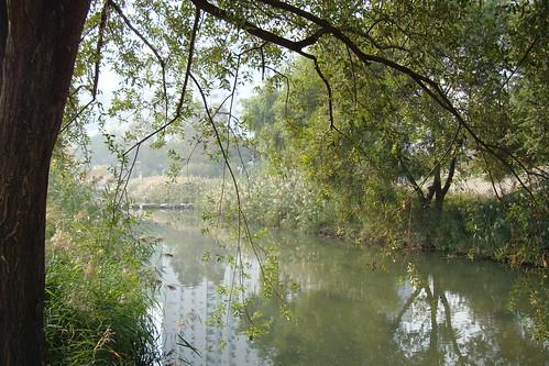Dongnae Fluß