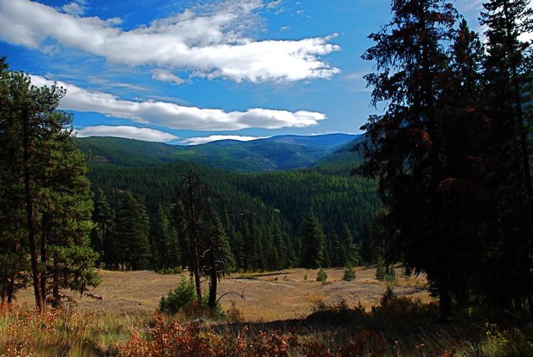 Sundance Ridge Roadless area