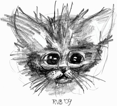 Drawing kittens, part 7