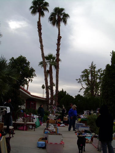 Sale by the palms