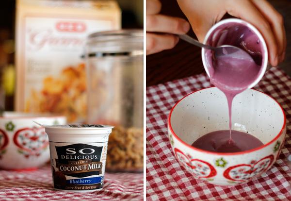 So Delicious Coconut Milk Blueberry Yogurt