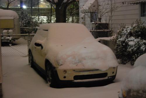 Snow-Covered Mini