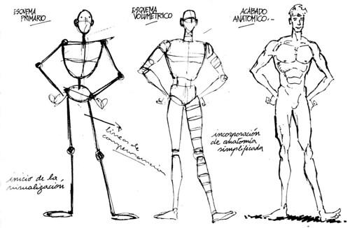 La anatomía en el dibujo – El susurro del talento