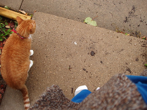 both watching from the stoop in our socks