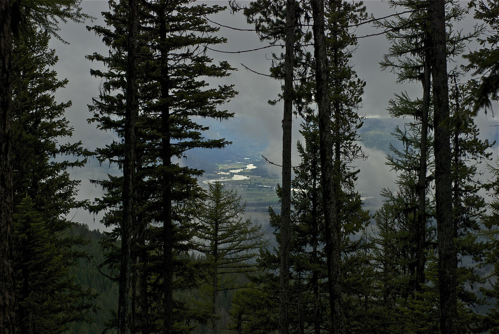 Clark Fork from trail 368