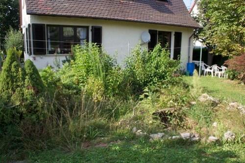 Steingartenrenovierung 001