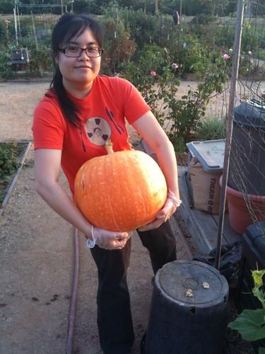 Tara and the pumpkin!