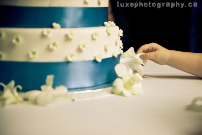 coming soon on luxephotography's blog