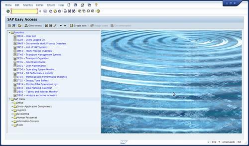 SAPGUI for Java 720 Public Preview