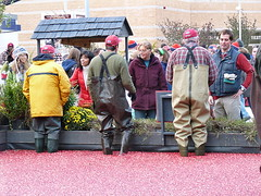 Cranberry growers chat with passersby