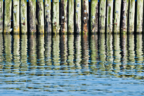 pilings at Westport