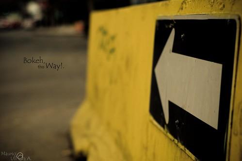 Bokeh, this Way!.