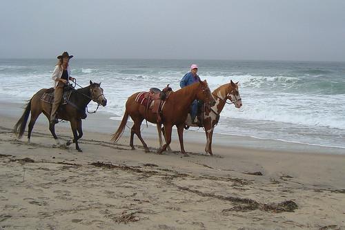 Rebecca and Colleen w/horses