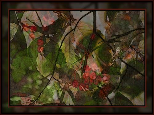 Fall Blush photo/digital art (c) 2009, Lynne Medsker