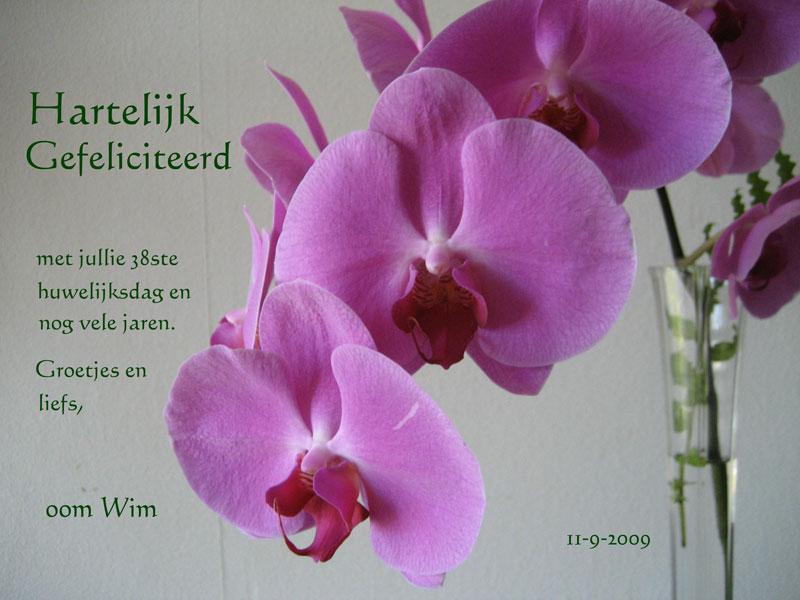 felicitatie-11-09-09