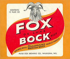 "fox_bock2 • <a style=""font-size:0.8em;"" href=""http://www.flickr.com/photos/41570466@N04/3926711597/"" target=""_blank"">View on Flickr</a>"