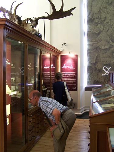 Visitors observing Darwin the Geologist