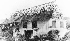 Coconut Leaf Roof Thatching