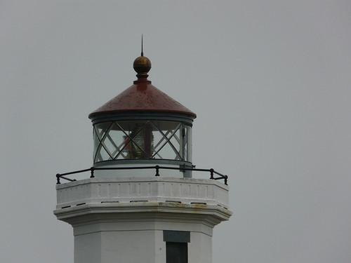 point wilson light