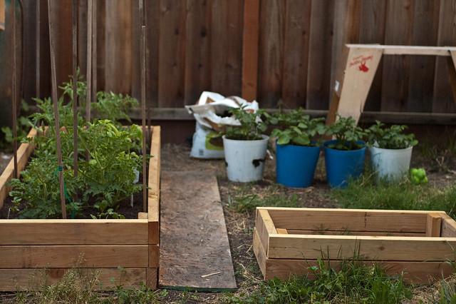 Garden_2weeks