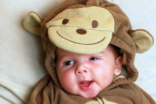 monkey in a monkey suit!