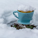 Snöfilter