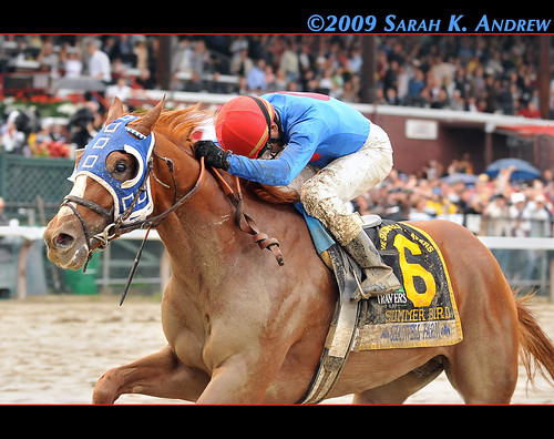Mid-Summer Bird! Summer Bird and Kent Desormeaux win the 2009 Travers Stakes