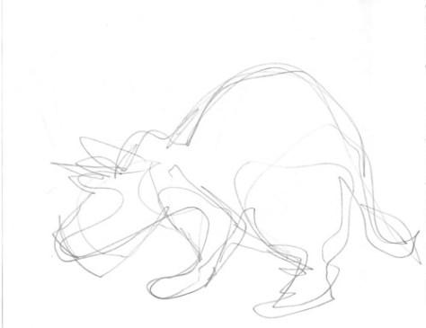 Gesture drawing: Ampersand as Rhinoceros