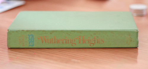 wuthering heights - PS