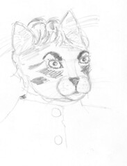 hk kitty
