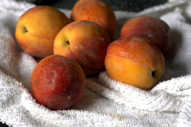 south jersey peaches