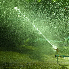 Water Droplet Texture
